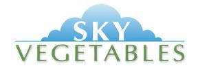 Logo-lo-res-sky